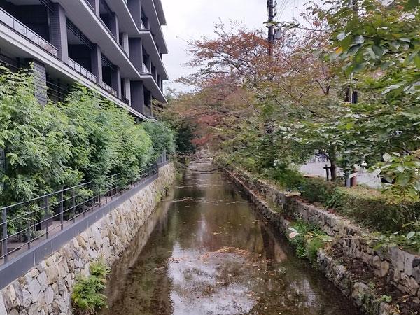 フレイバーグループ 京都河原町店5